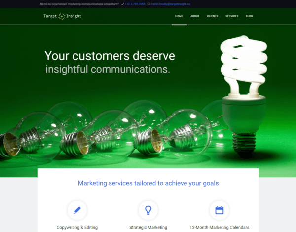 Portfolio Image of Target Insight's Web Site